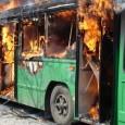 О том как я ненавижу наглых водителей троллейбусов